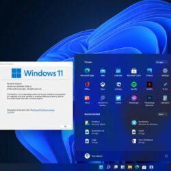 Sudahkah Kamu Meng-Update Windows 11 ? Jika Belum, Yuk Check Kekurangan Windows 11
